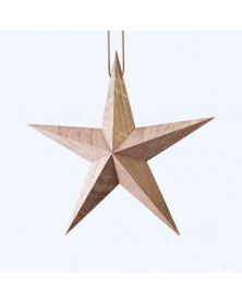 Julestjerne | Stjerne i...
